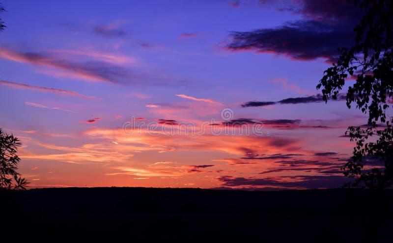 Colores del verano foto de archivo