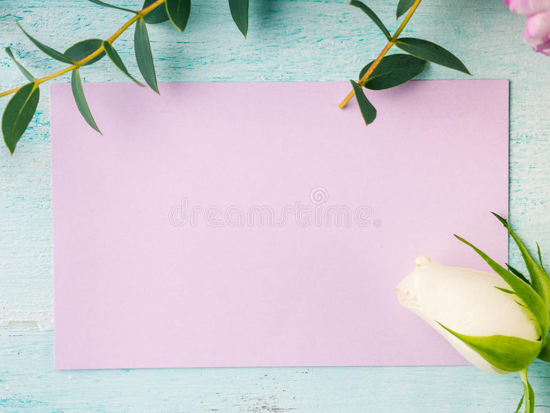 Colores en colores pastel de la tarjeta de la flor de la rosa púrpura vacía del tulipán imagen de archivo libre de regalías