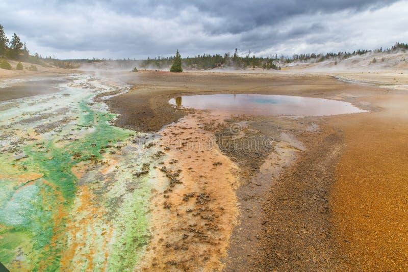 Colores en Yellowstone fotografía de archivo libre de regalías