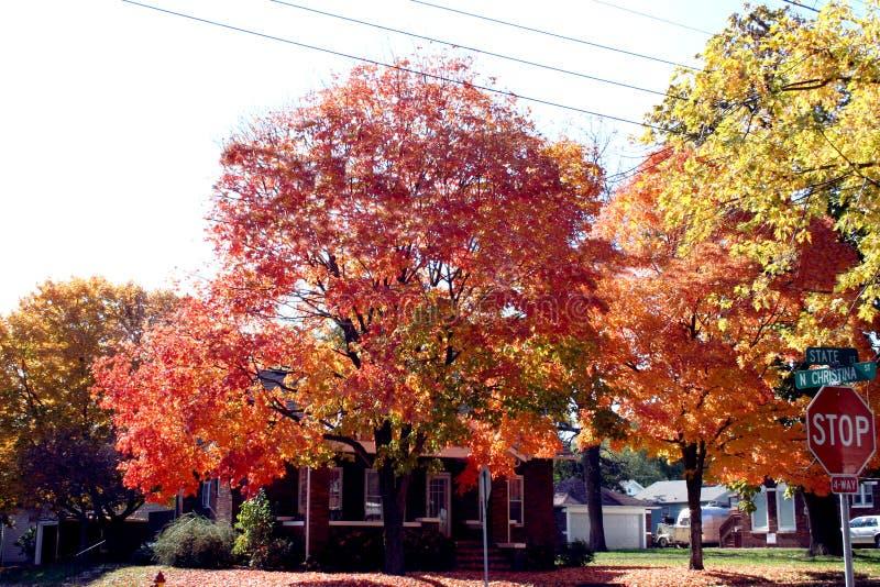 Colores hermosos calientes de una caída en una pequeña ciudad en Missouri imágenes de archivo libres de regalías