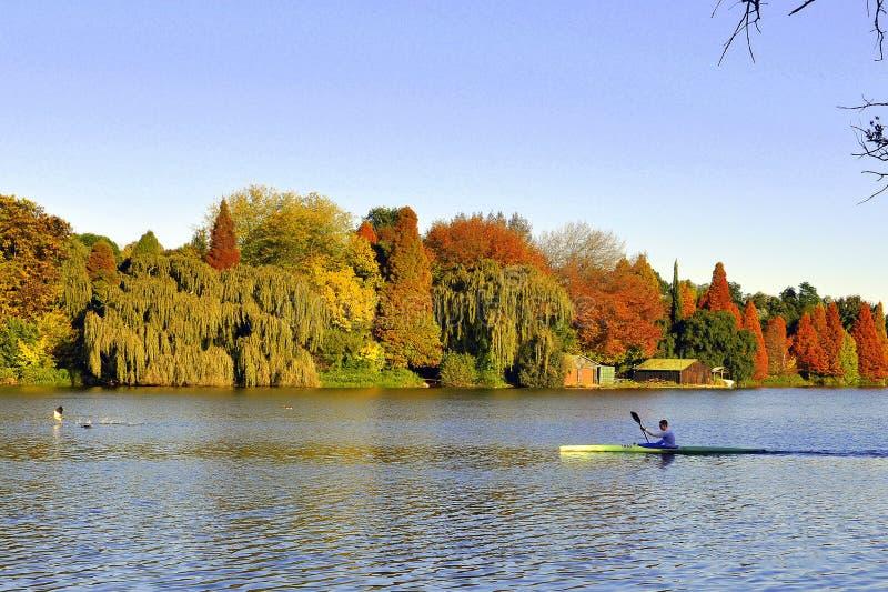 Colores hermosos del otoño del pasado solitario del paddler imágenes de archivo libres de regalías