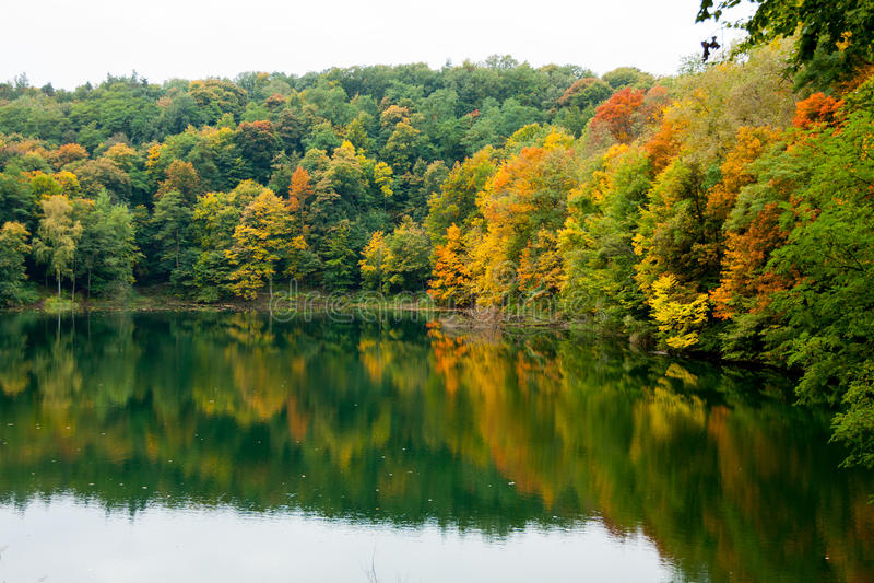 Colores hermosos del otoño en los árboles fotos de archivo libres de regalías