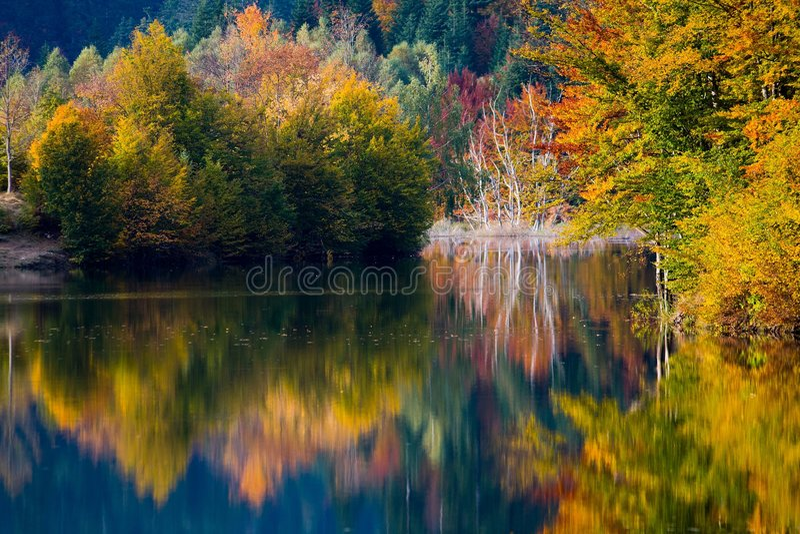 Colores vivos del otoño en el lago fotografía de archivo libre de regalías