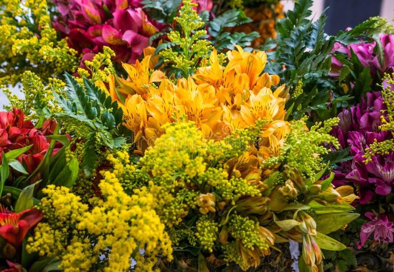 Colores y flores, vida de hecho fotografía de archivo