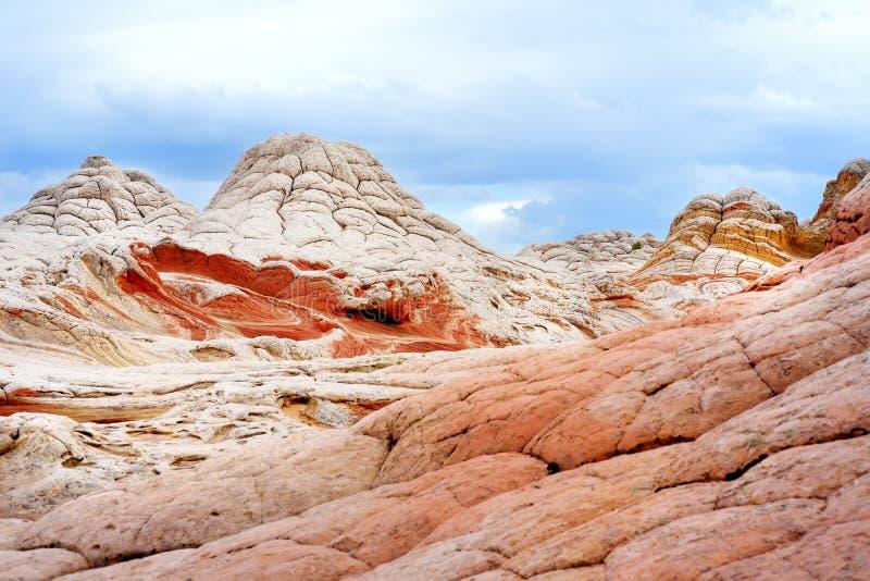 Colores y formas asombrosos de las formaciones de la piedra arenisca en el bolsillo blanco, Arizona imagen de archivo