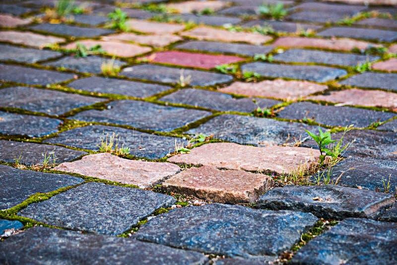 Colorez le trottoir lumineux avec l'herbe verte images stock