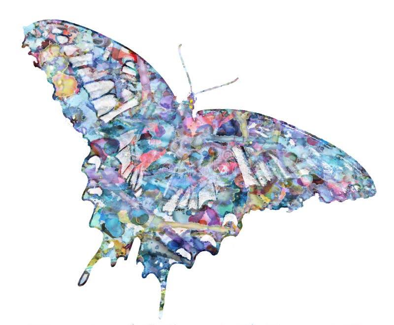 Download Colorfly stock foto. Afbeelding bestaande uit droom, plons - 39103482