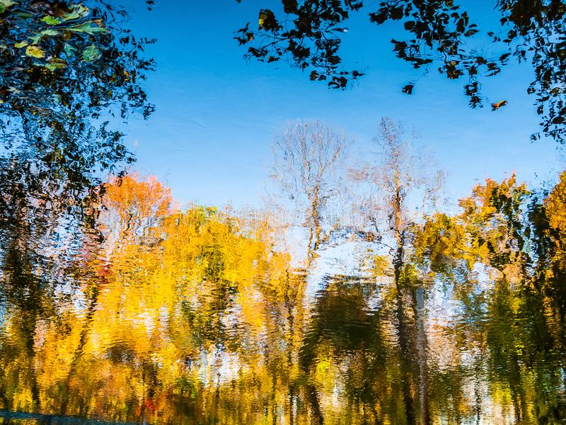 Psychedelic Autumn Pond stock images