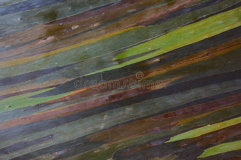 Colorful abstract pattern stock photo