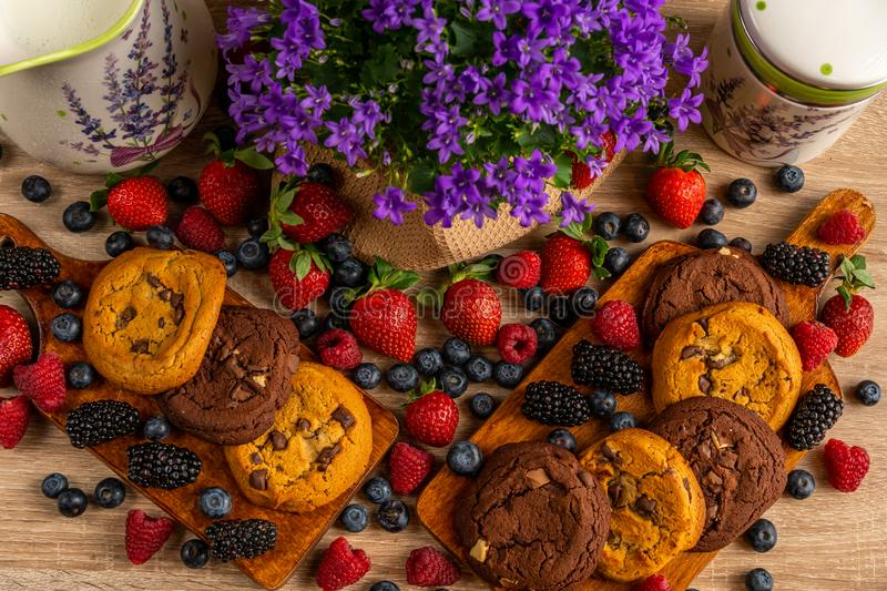 Colorful assorted mix of strawberry, blueberry, raspberry, blackberry and cookies stock photos