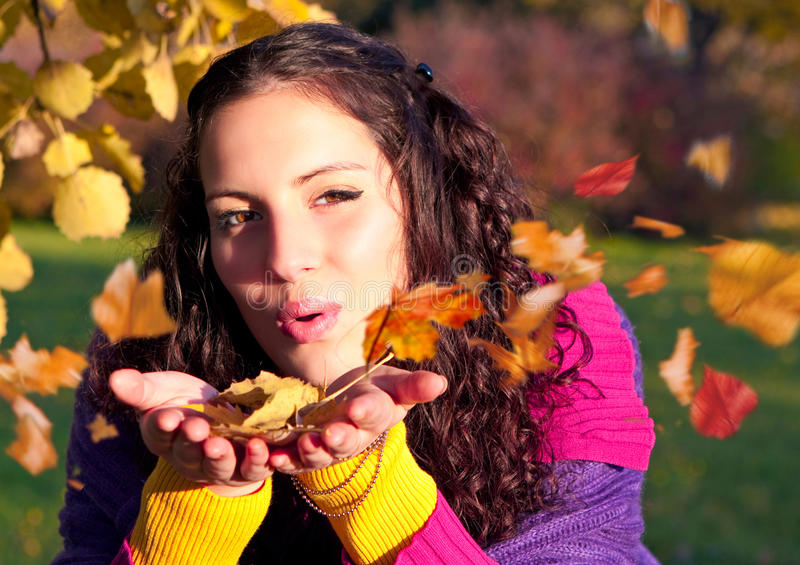 Colorful autumn 7 stock photography