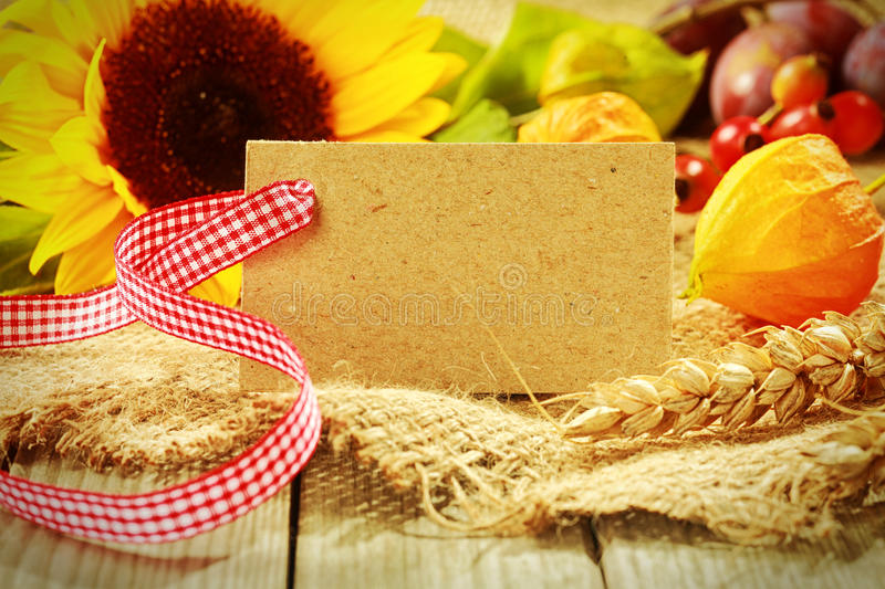 Colorful autumn background with a gift tag. Colorful autumn background with a blank gift tag with red and white ribbon and golden gooseberry, yellow sunflower stock image