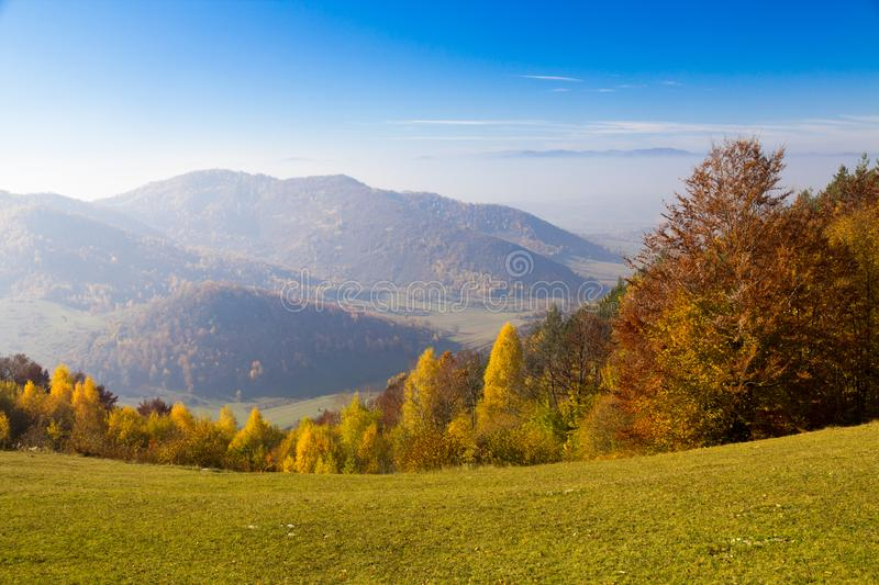 Colorful autumn forest landscape, with mountains in the background. stock image