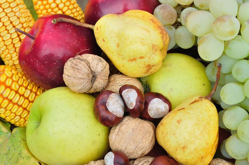 Colorful autumn fruits and vegetables for natural background stock photos