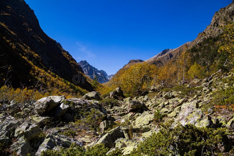 Colorful autumn landscape in the Caucasus mountains. Sunny morning scene with mountain. royalty free stock image