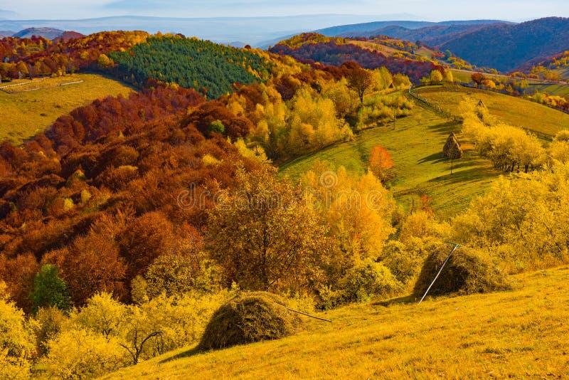 Colorful autumn landscape royalty free stock image