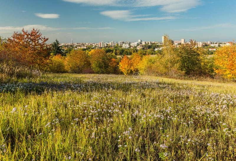 Colorful autumn landscape with green meadow and Prague city stock images