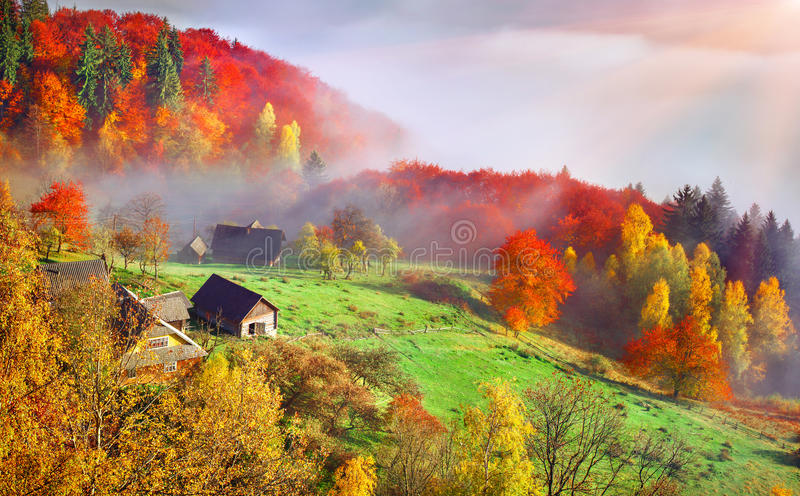 Colorful autumn landscape in the mountain village. Foggy morning. In the Carpathian mountains. Sokilsky ridge, Ukraine, Europe royalty free stock photography
