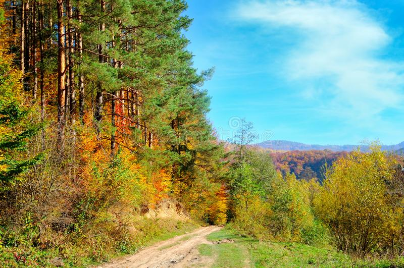 Colorful autumn landscape with picturesque forest and old country road. Sunny morning scene in Carpathians, Ukraine, Europe. stock photography
