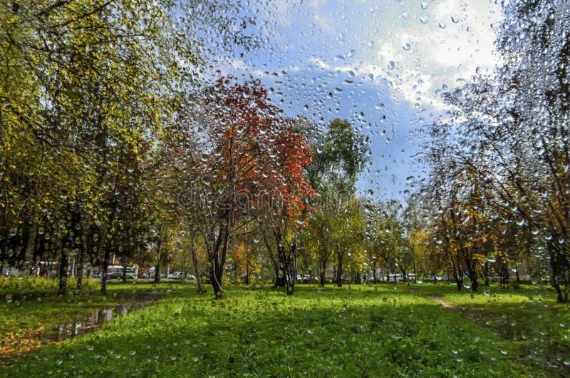 Colorful autumn landscape: rain and sunshine - view through the stock photos