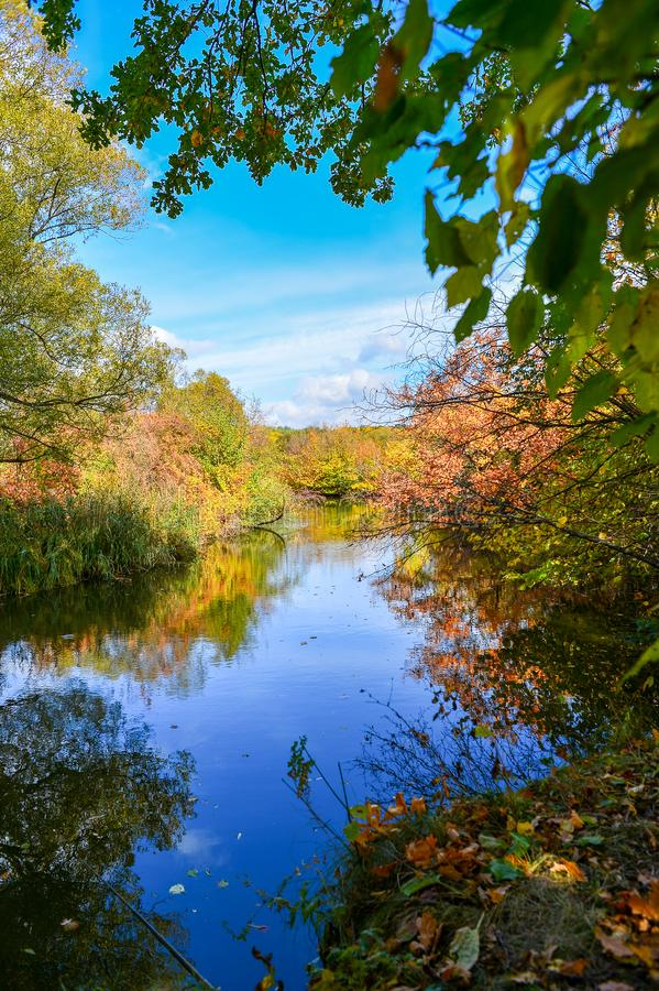 Colorful autumn landscape on a sunny day with trees with water and clouds royalty free stock photography