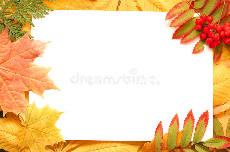 Colorful autumn leaves border or frame royalty free stock images