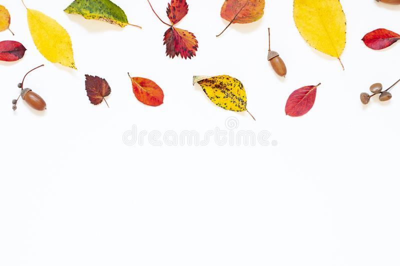 Colorful Autumn leaves concept frame on the white background. royalty free stock image