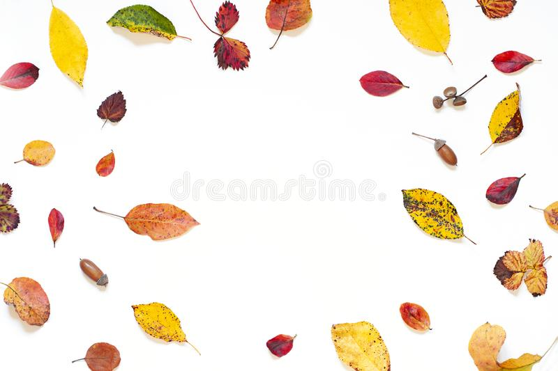Colorful Autumn leaves concept frame on the white background. stock photo