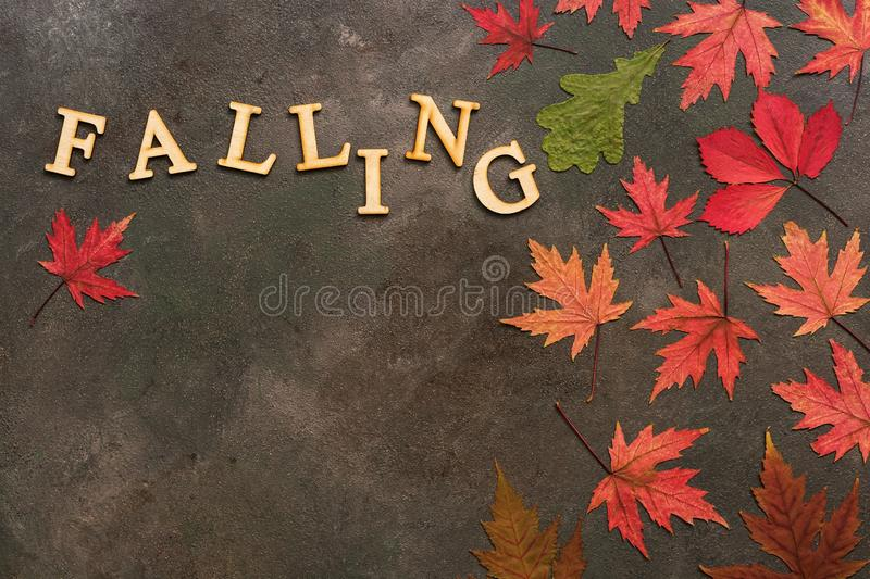 Colorful autumn leaves on a dark rustic background and text from wooden letters-falling. Creative autumn layout. Flat lay, copy. Space,overhead view royalty free stock photos