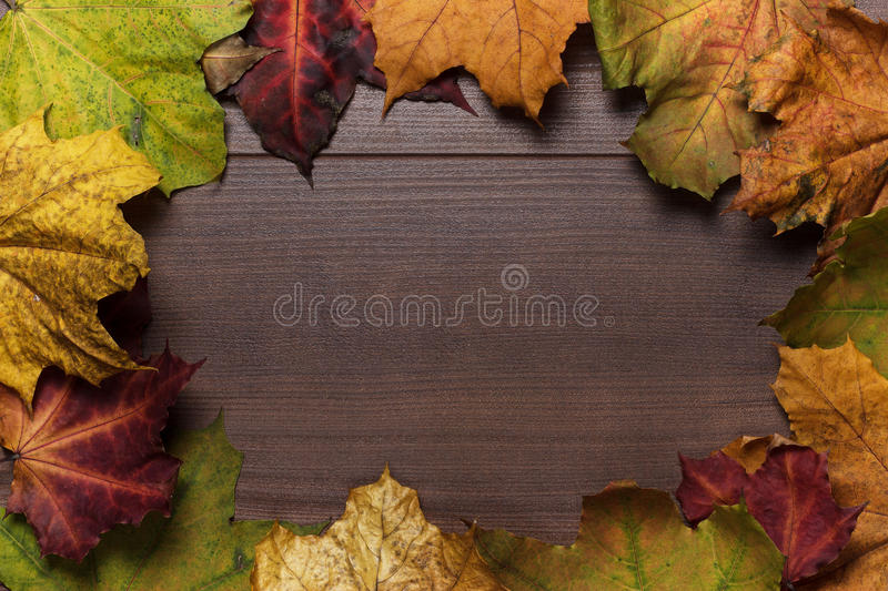 Download Colorful Autumn Leaves Frame Stock Image - Image of copy, bunch: 27154937