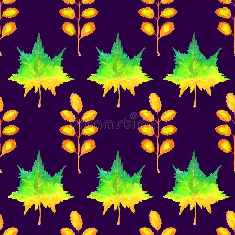 Colorful autumn maple and acacia leaves, hand painted watercolor illustration, seamless pattern on dark blue. Background stock illustration