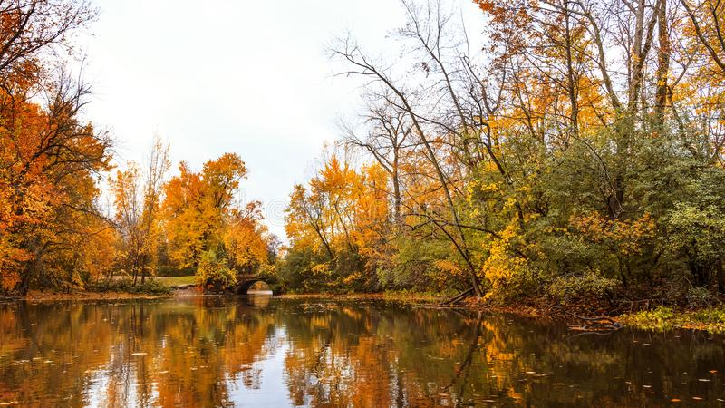 Colorful autumn with maple trees and water surface at the Mille stock photography