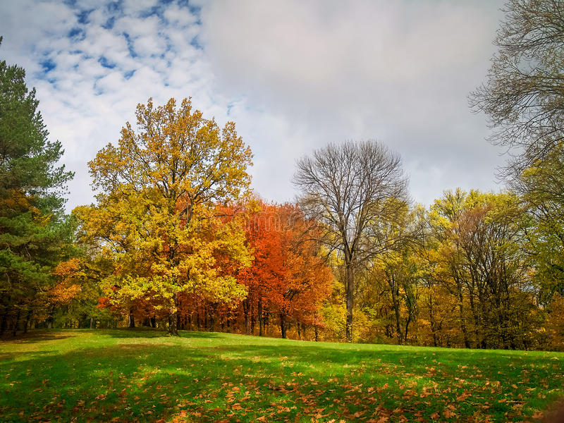Colorful autumn in the park stock photography