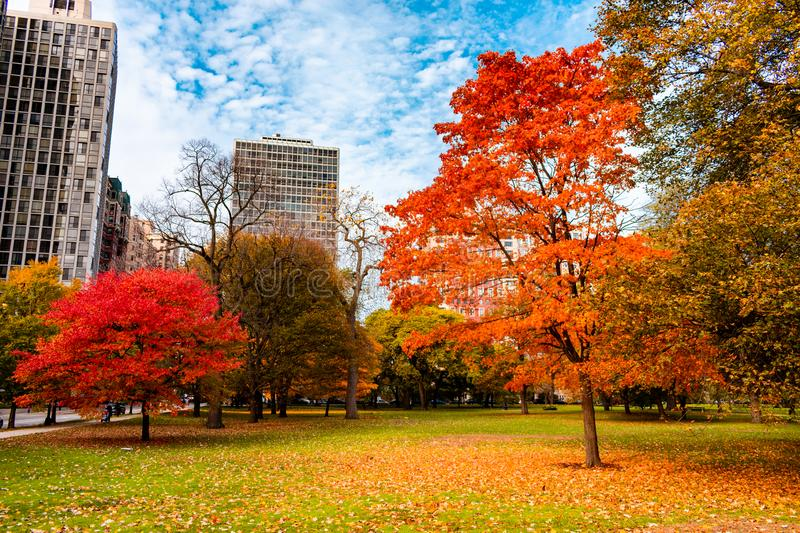 Colorful Autumn Scene in Lincoln Park Chicago stock images