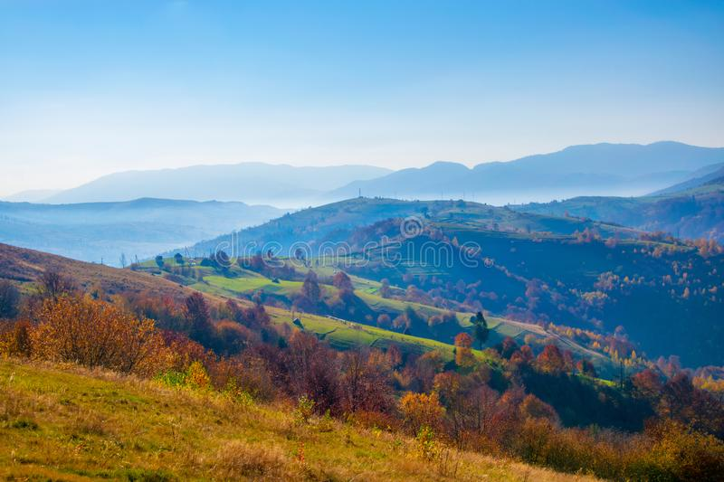 Colorful autumn scenery in the Carpathian mountains. Amazing autumn scenery in the Carpathian mountains. Colorful hills in sunlit and hazy ridges on background stock photo