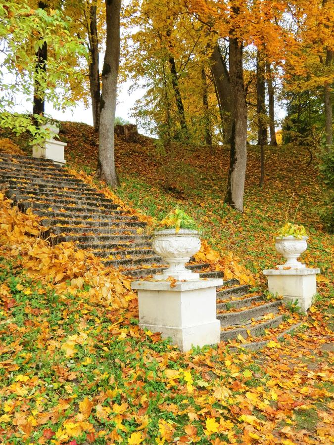 Free Colorful Autumn Trees And Old Stairs, Lithuania Stock Image - 101801821