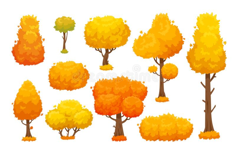 Colorful autumn trees. Cartoon yellow fall tree and autumnal garden bush for landscape background vector set royalty free illustration