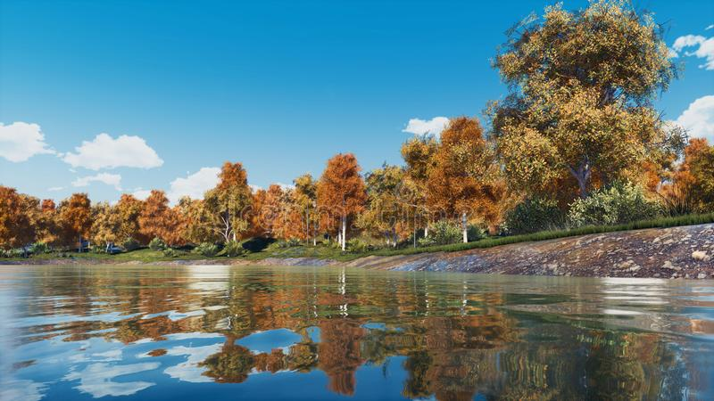 Colorful autumn trees on a forest lake shore royalty free stock images