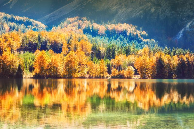 Colorful autumn trees and their reflections on the lake stock images