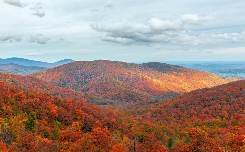 Colorful autumn view of Blue Ridge mountain ridges from Skyline Drive in Shenandoah National Park.Virginia.USA. Colorful autumn view of Blue Ridge mountain royalty free stock photos