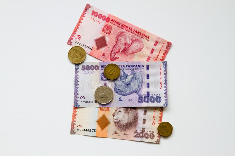 Tanzanian Shillings with Elephant, Rhino and Lion. Colorful background of mixed banknotes and coins of Tanzanian Shilling with endangered wildlife species on the royalty free stock photo