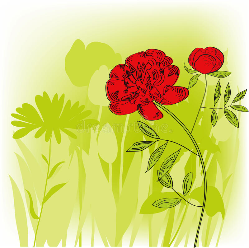 Colorful Background With Peony Flowers Royalty Free Stock Photo