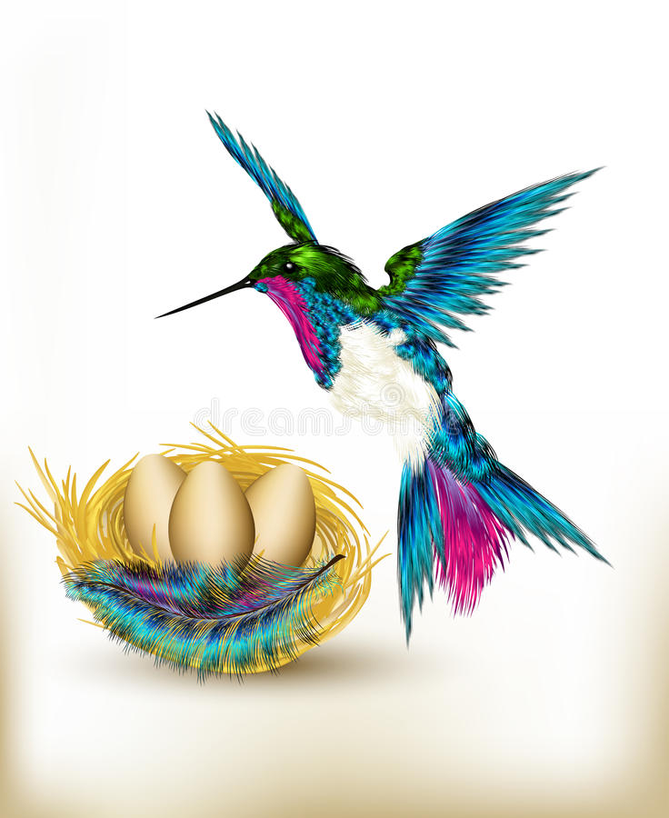 Colorful background with realistic hummingbird and nest full of stock illustration