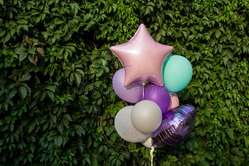 Colorful balloons on the background of green grape leaves. The concept of happy birthday in summer royalty free stock photo