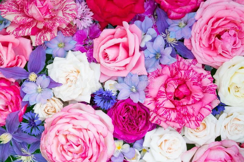 Colorful summer flowers as background. Colorful beautiful roses and cornflower as background royalty free stock image