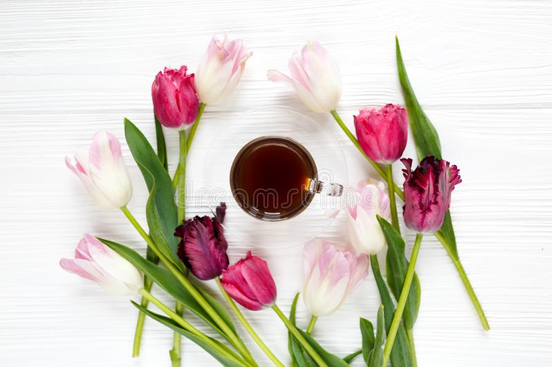 Colorful beautiful tulips and coffee cup on the white wooden table. Valentines, spring background. floral mock up royalty free stock images
