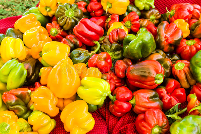 Colorful bell peppers at the market stock photography