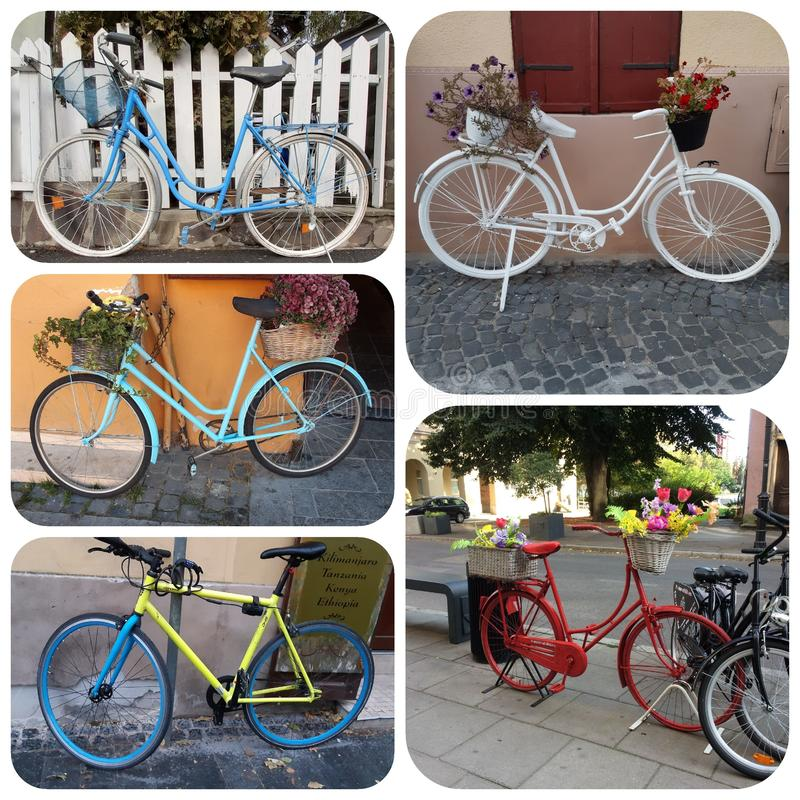 Colorful bicycle collage 5 images 1:1 format. 916. Bicycles and flower pots. 11 stock image