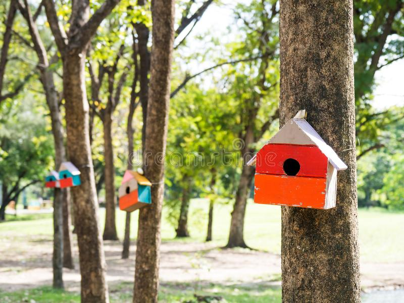 Colorful Bird Houses in the park Hanging on a tree, The bird house was placed at various points.birdhouse forest with many brightl. Y colored bird houses built stock image