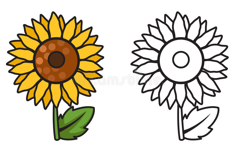 Download Colorful And Black White Sunflower For Coloring Book Stock Vector